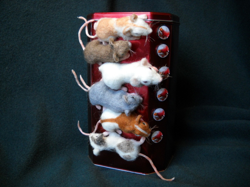 Mouse Litter 11: The Magnetic Mice