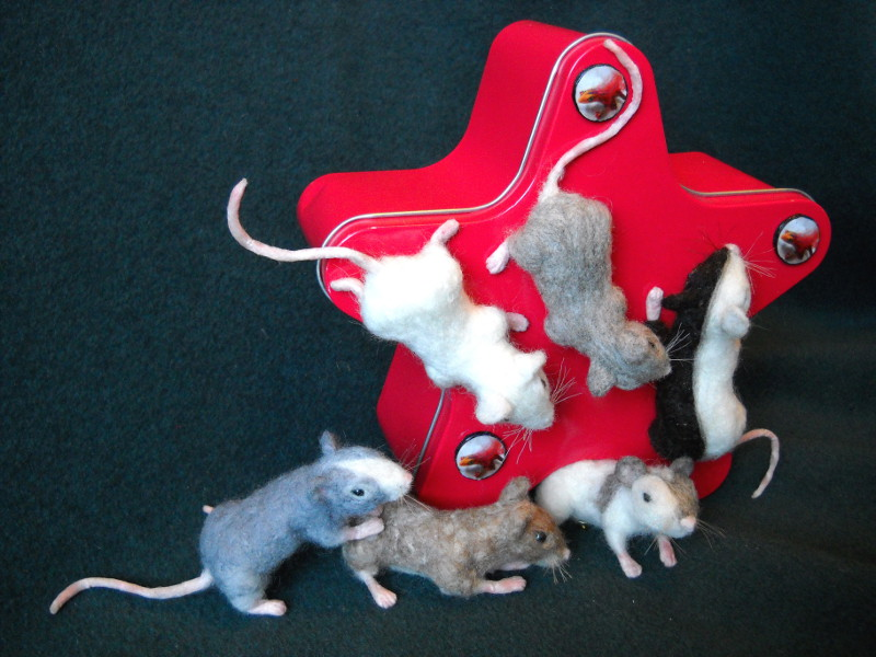 Mouse Litter 12: Mixed-Up Mice