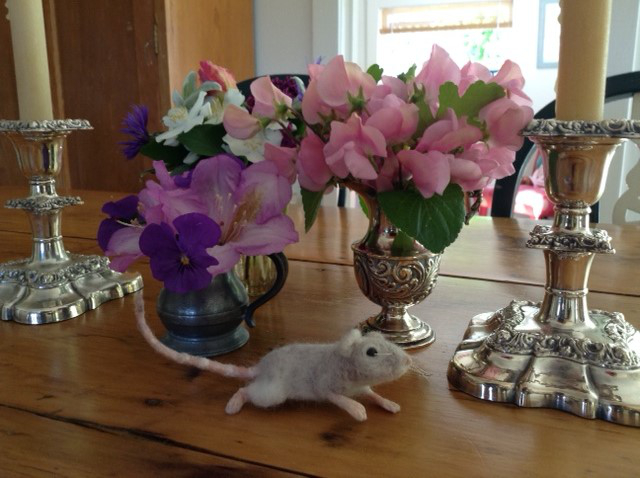 Mouse Litter 14 &#150 Moon Mouse at Home