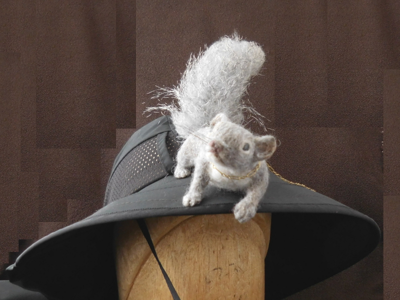 Gray Squirrel &#150 Silktail 2