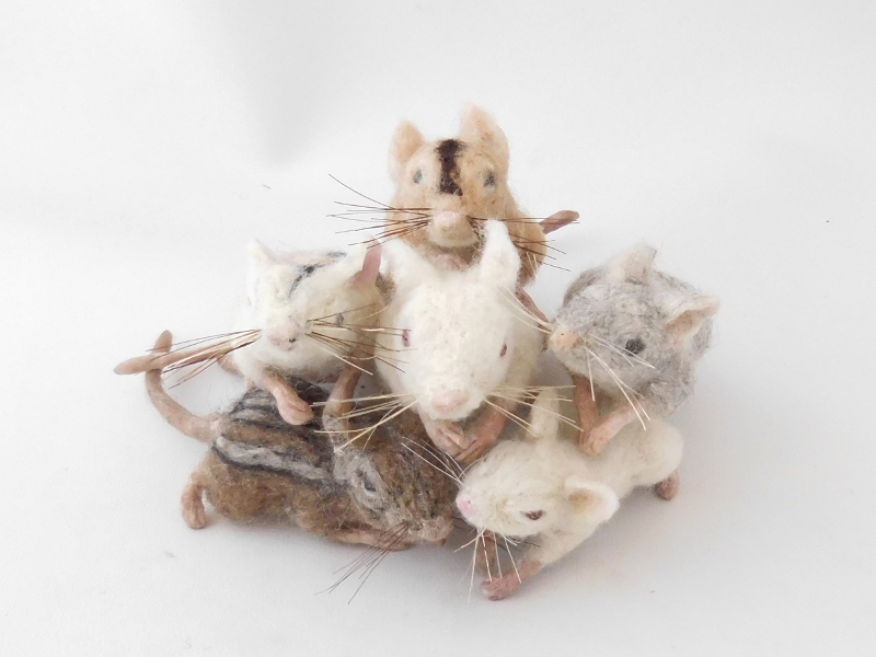 Mouse Litter 23 – Rebuilding the Population